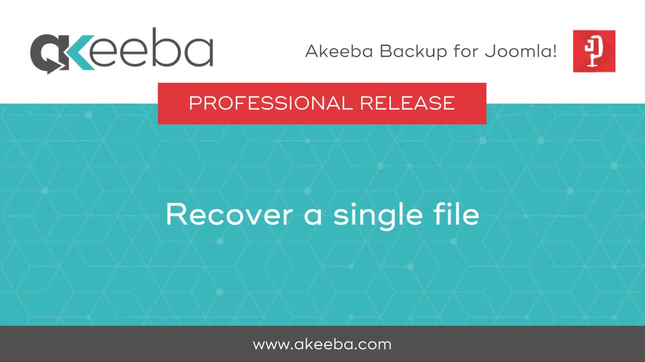 Recover a Single File