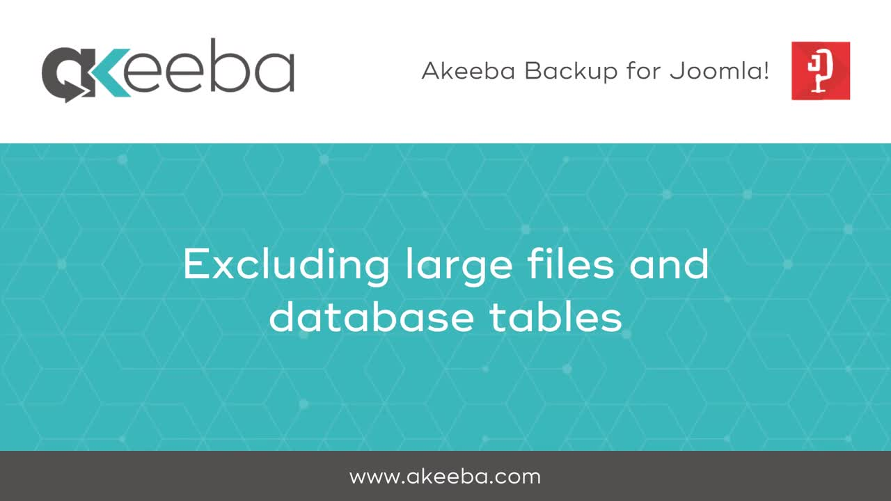 Excluding Large Files and Database Tables