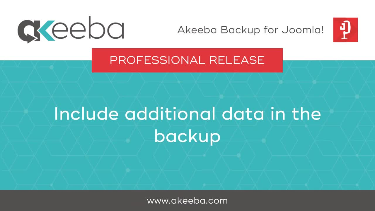 Include Additional Data in the Backup