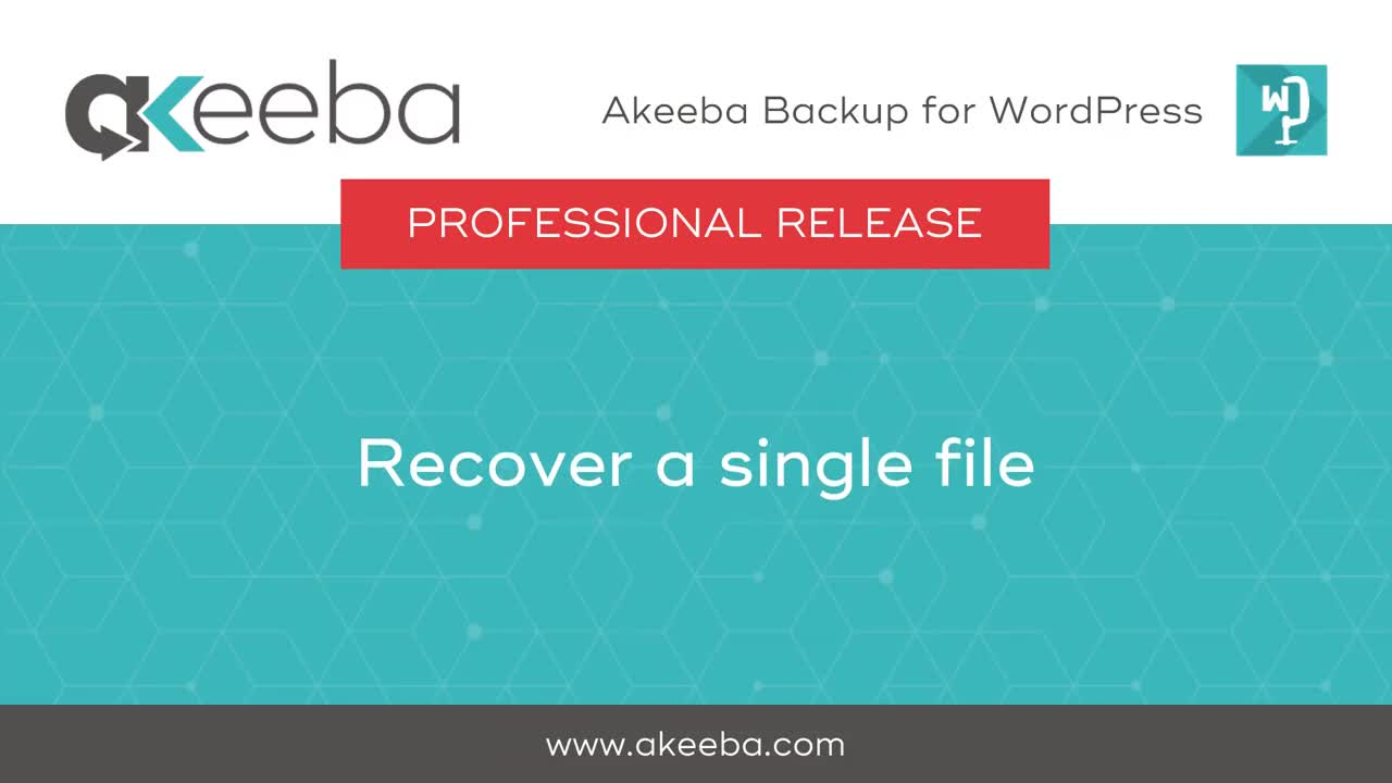 Recovering a Single File