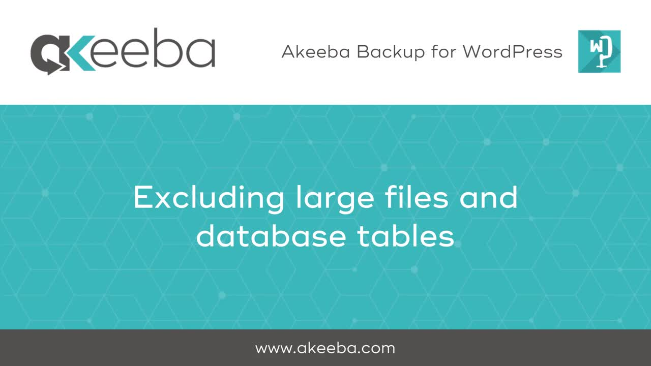 Excluding Large Files & Database Tables